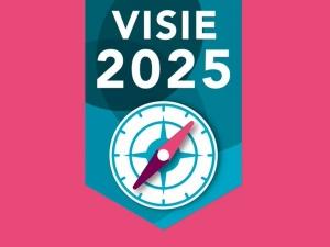Visie Medisch Specialist 2025